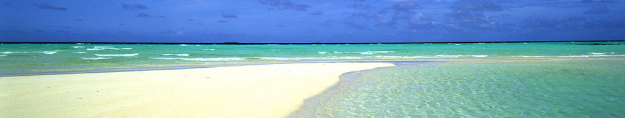 Hilton Head Tides